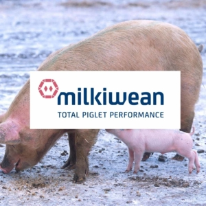 milkiwean vital start